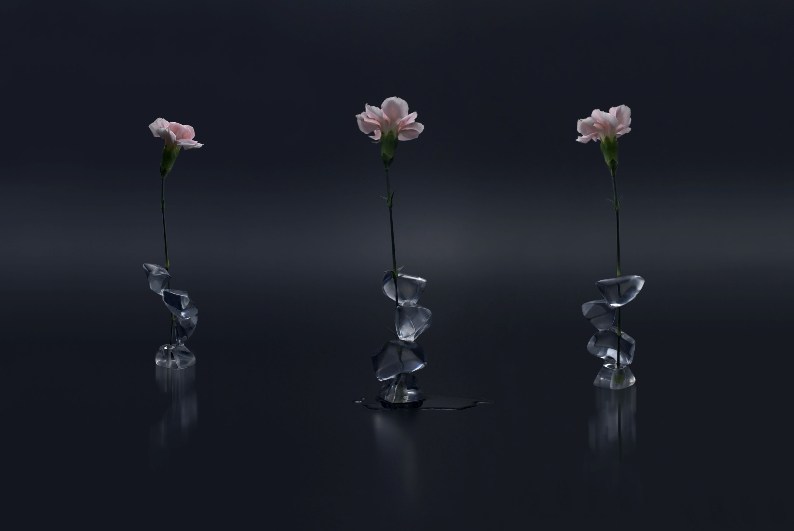 Ice Flower Vase